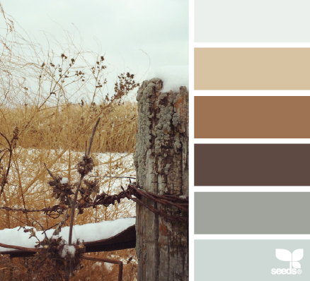 early winter tones - design seeds