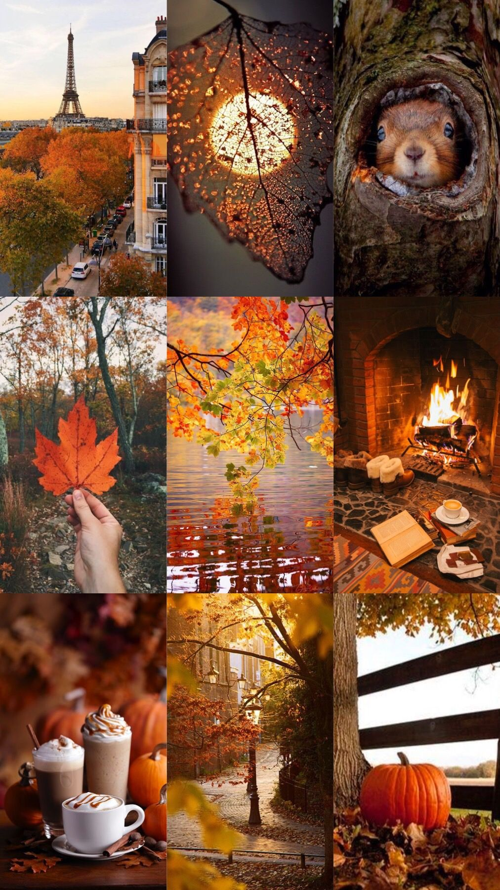 Scene Di Autunno, Fotografia Di Autunno, Poster D'epoca, Capelli Auburn, Autunno, Sfondi, Paesaggi, Sfondo Colorato