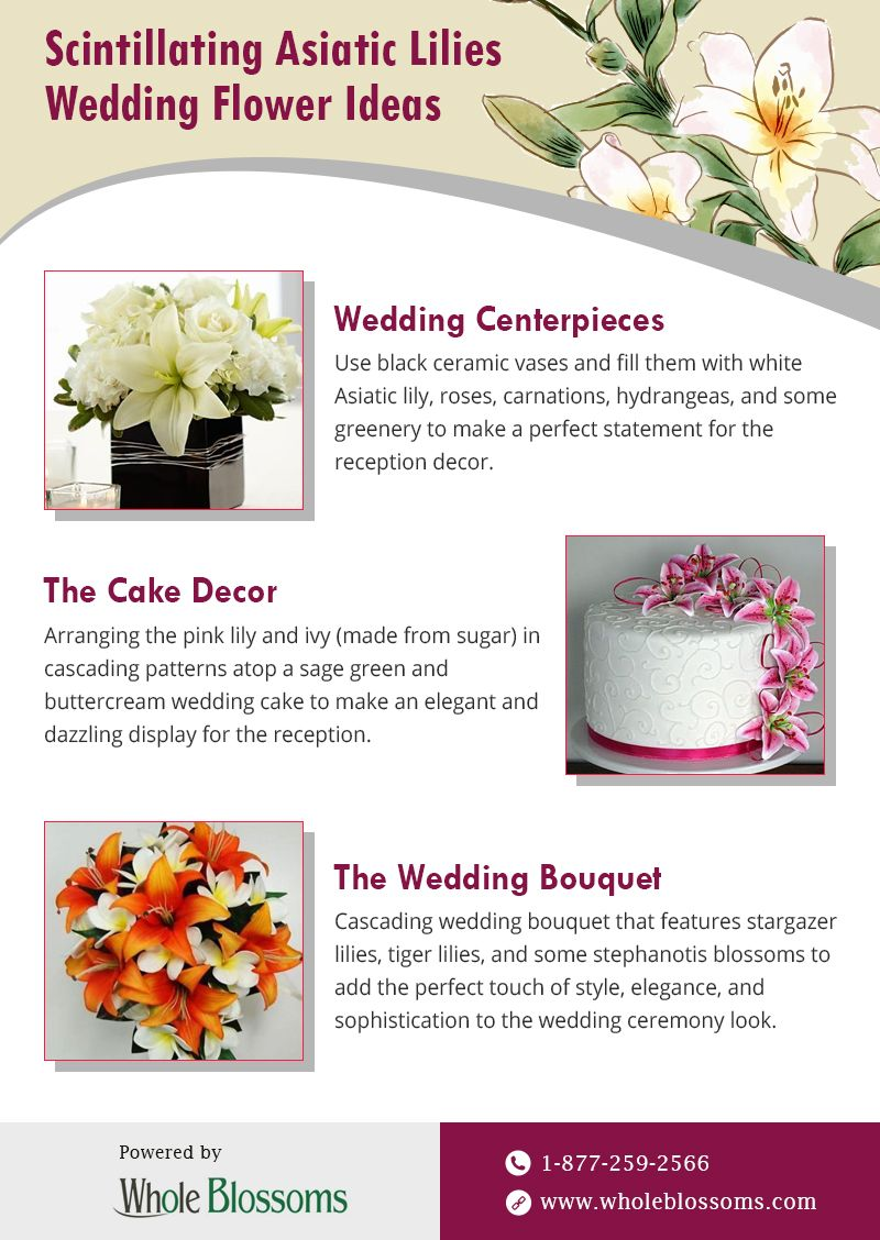 This Infographic Provides You With The Best Ideas And Uses Of Asiatic Lilies They Are Used For Decorating Wedding Centerpieces Some Greenery That