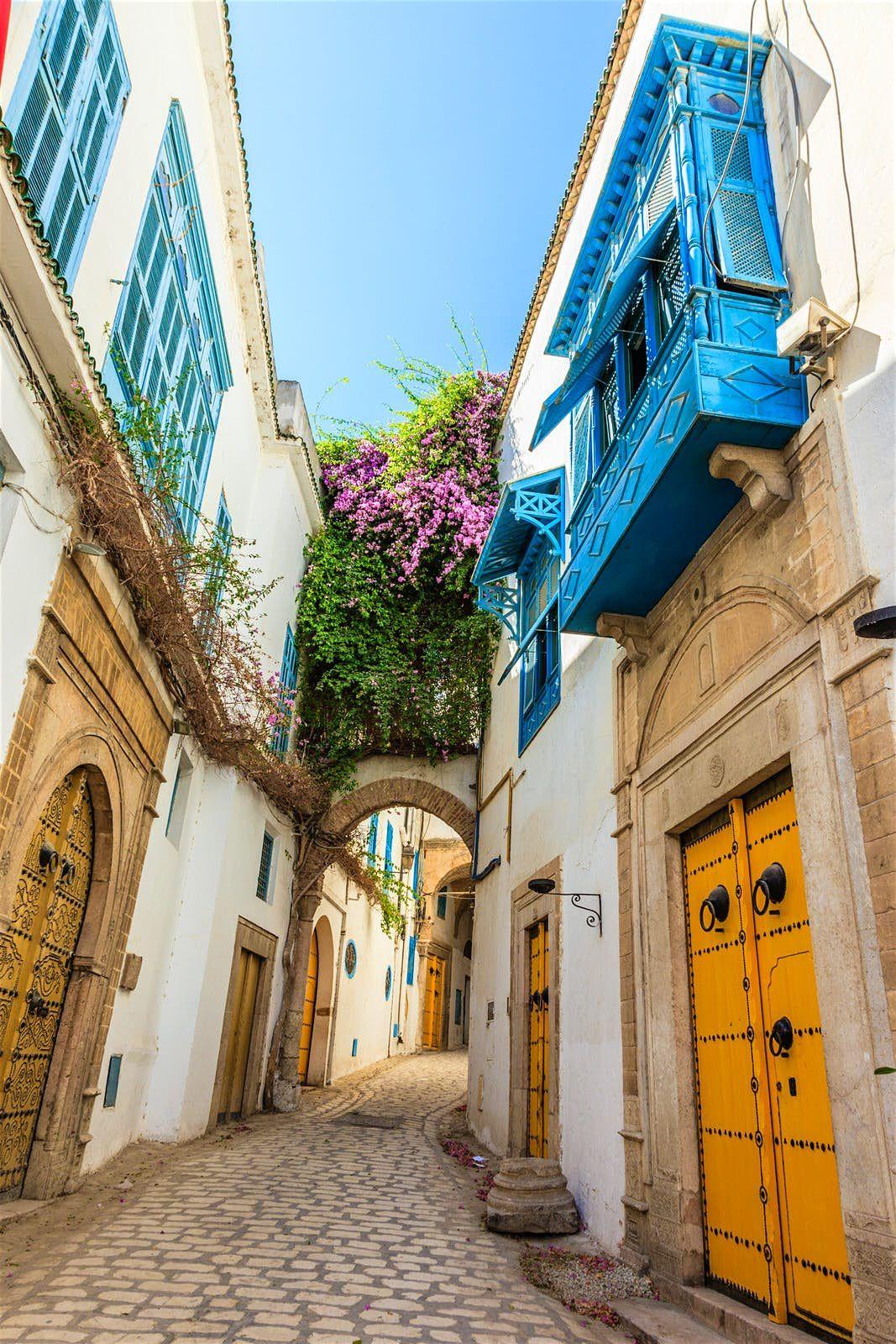 How To Live Like A Local In Tunis Tunisia Tunisia Tunis Tunisia Africa
