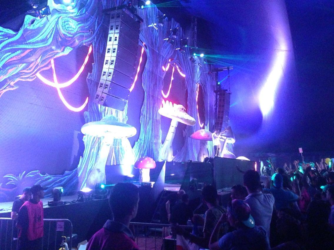 The Mushroom Stage   Tomorrowland Brasil 2015   Concert