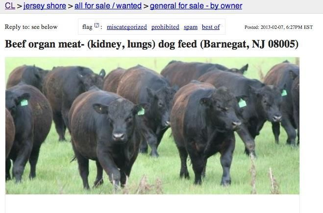 10 Bizarre Items For Sale On Craigslist Cattle Farm Animals