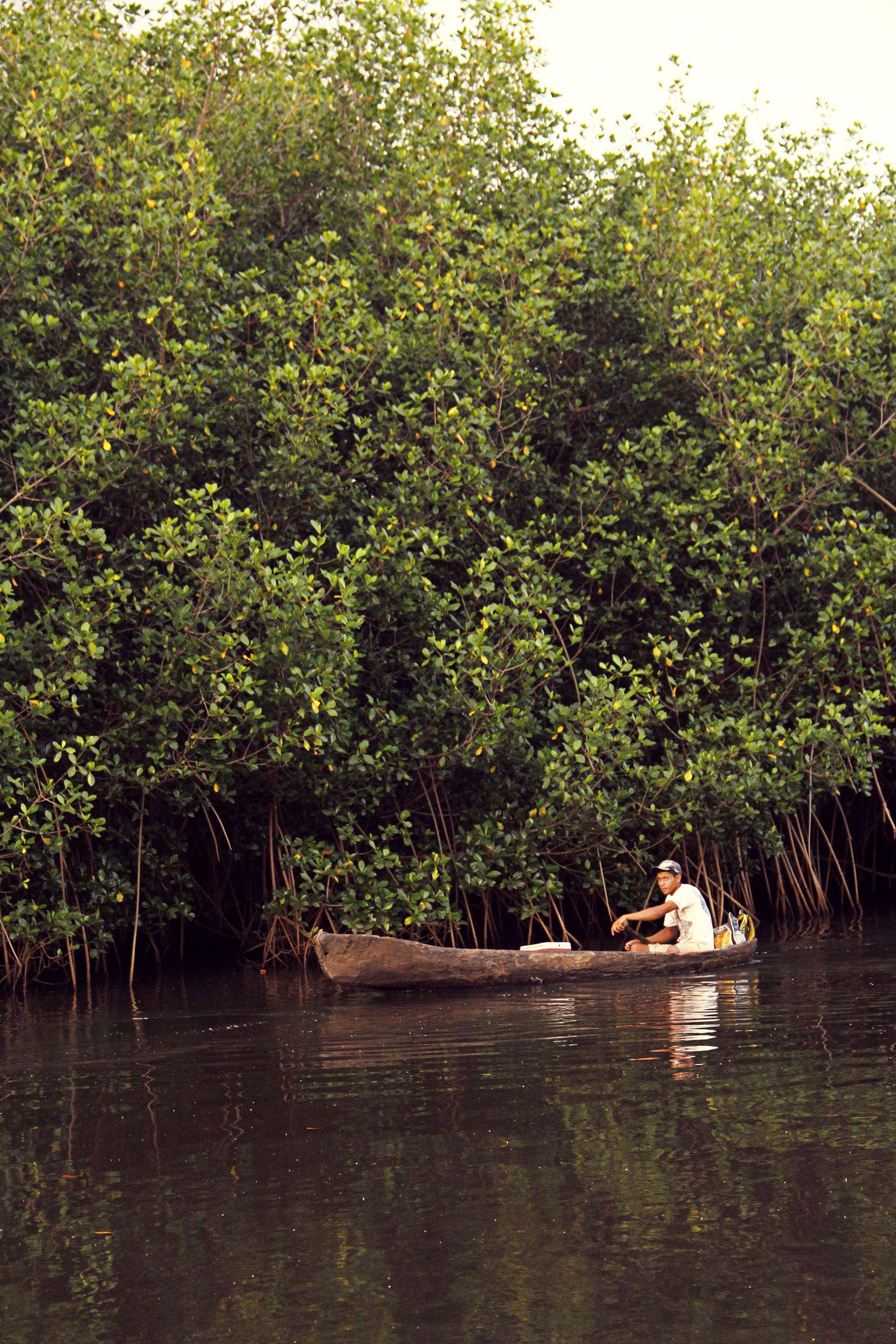 los manglares, barra de Santiago.