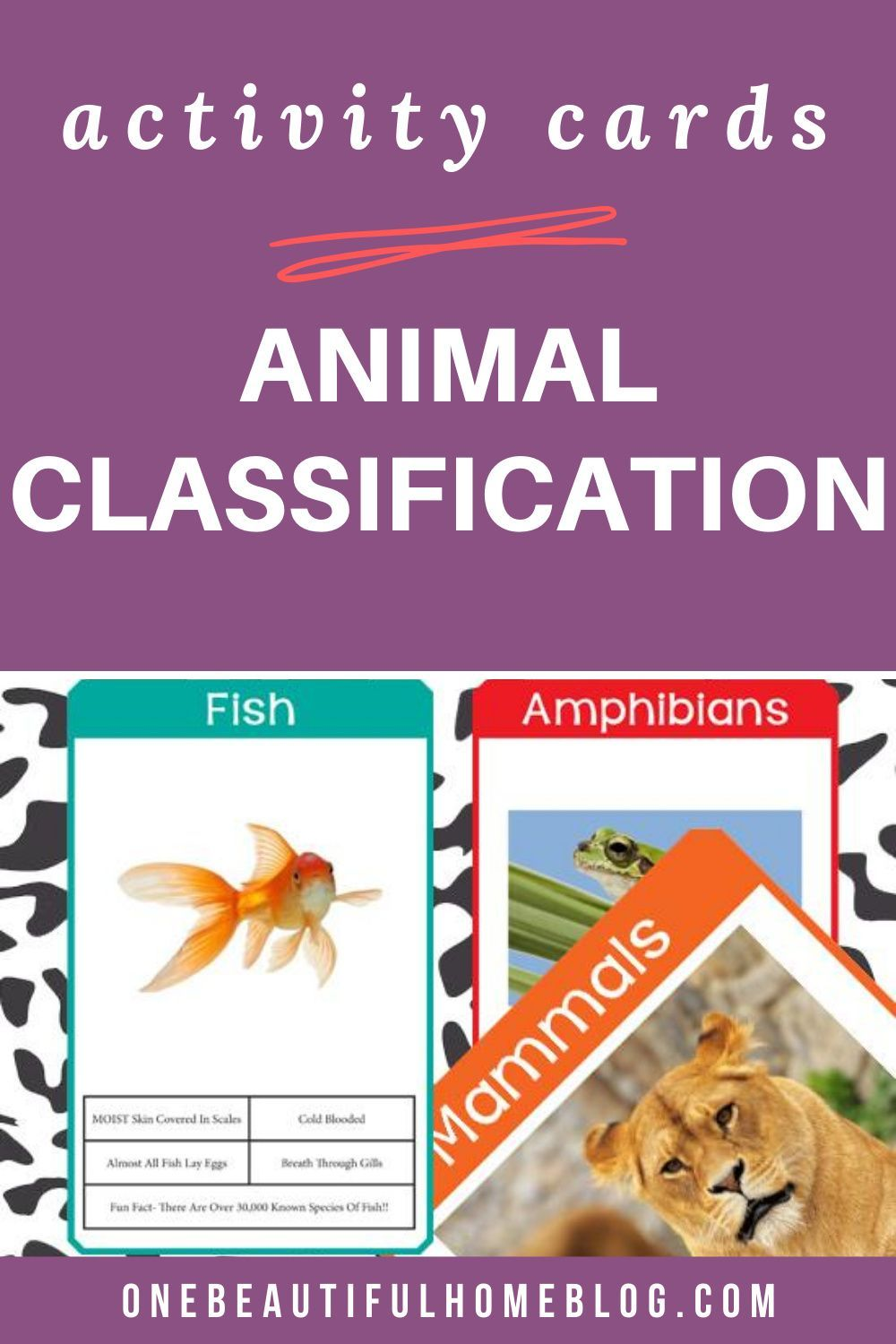 Animal classification cards one beautiful home in 2020