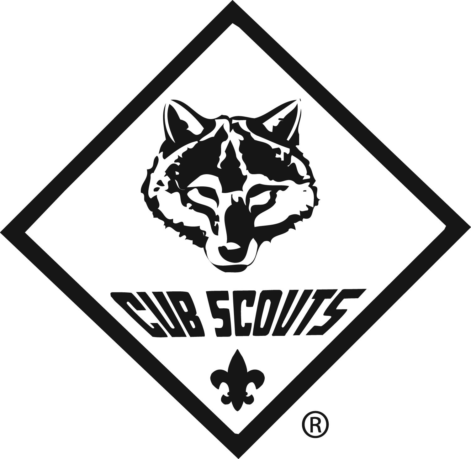 New Cub Scout Program Images