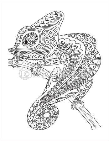 Camaleón monocromo para colorear página negro sobre blanco. — Vector ...