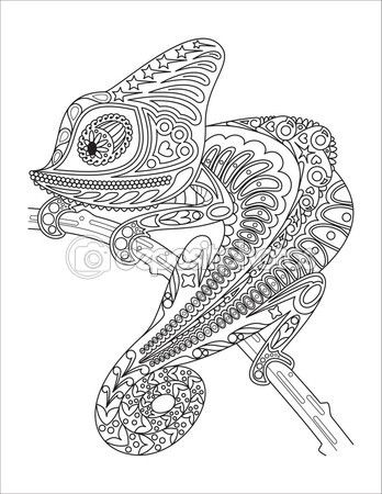 Camaleon Monocromo Para Colorear Pagina Negro Sobre Blanco
