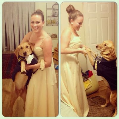 Couples Costume Dog Costume Beauty And The Beast Couples