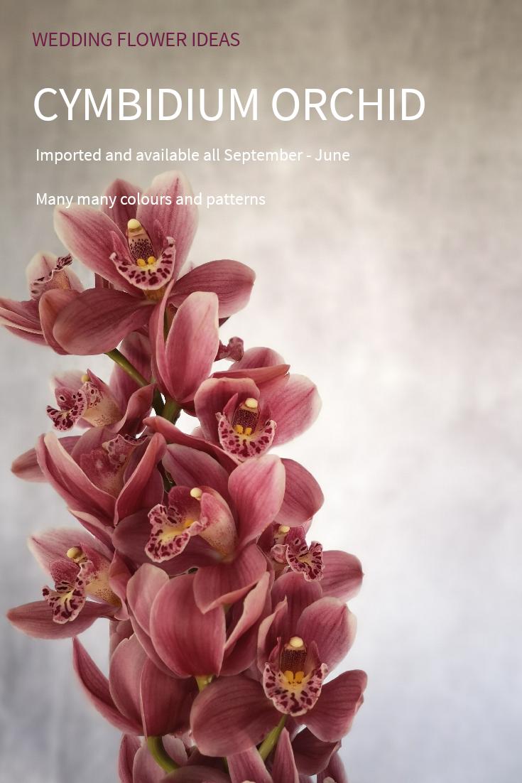 Dramatic Wedding Flower Ideas Orchids Are A Brilliant Tropical Wedding Flower These Cymbidium Orch Wedding Flowers Tropical Wedding Flowers Tropical Wedding