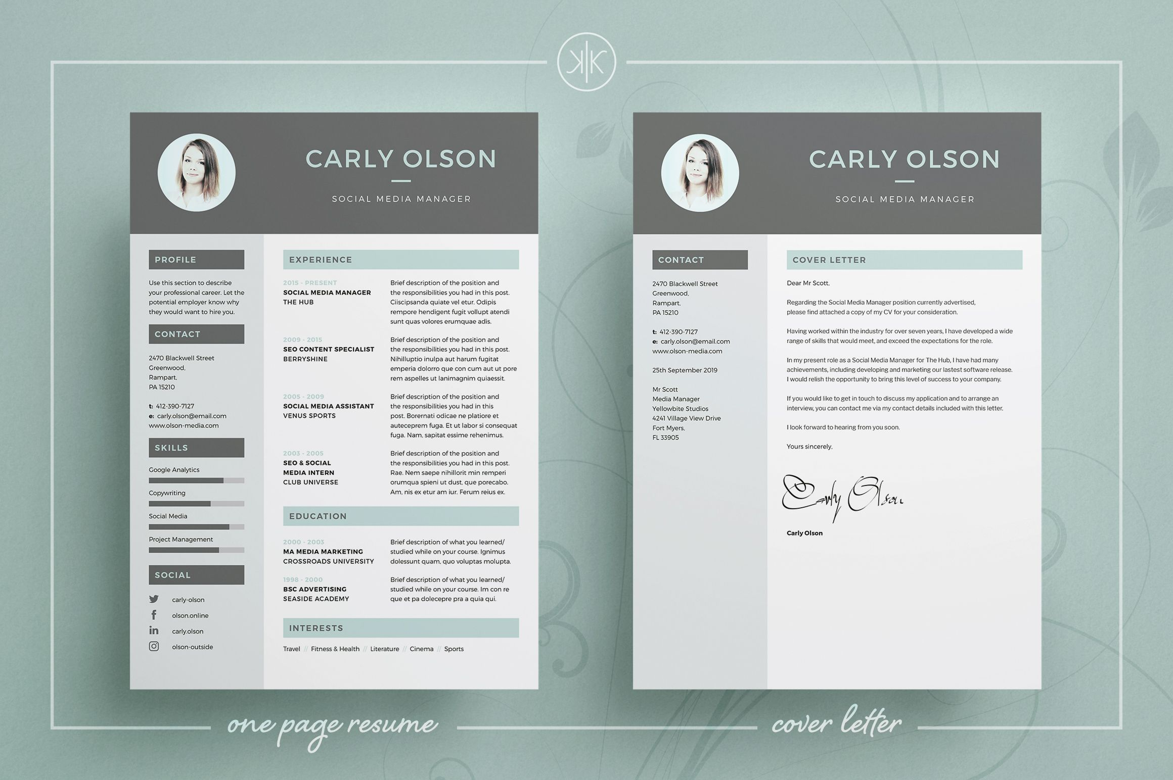 professional resumecv professional resume template cv template resume advice cover