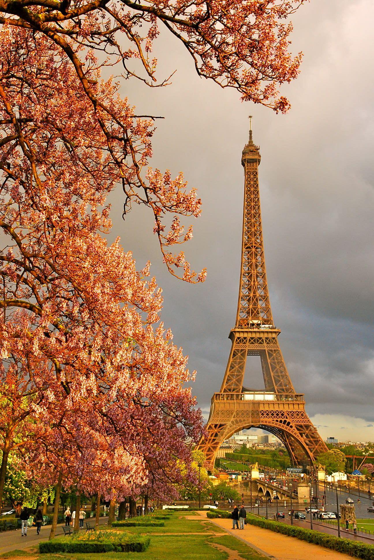 Travel Image By Anna Harris Paris Tour Eiffel Paris France