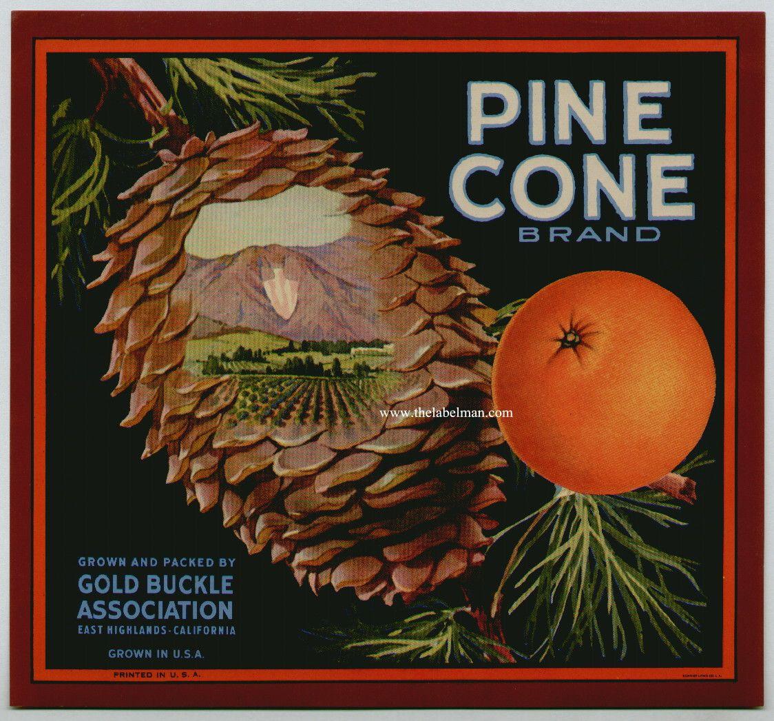 East Highlands Gold Buckle Brand Orange Citrus Fruit Crate Label Art Print