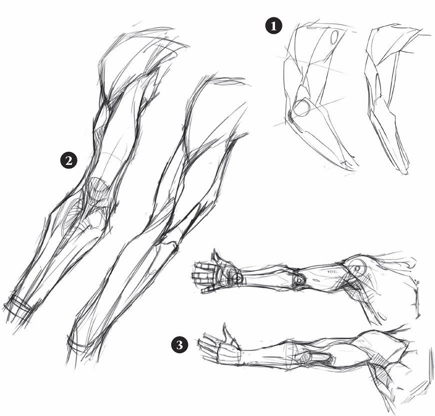 Schizzi e disegni di braccia progetti da provare nel for Disegnare progetti