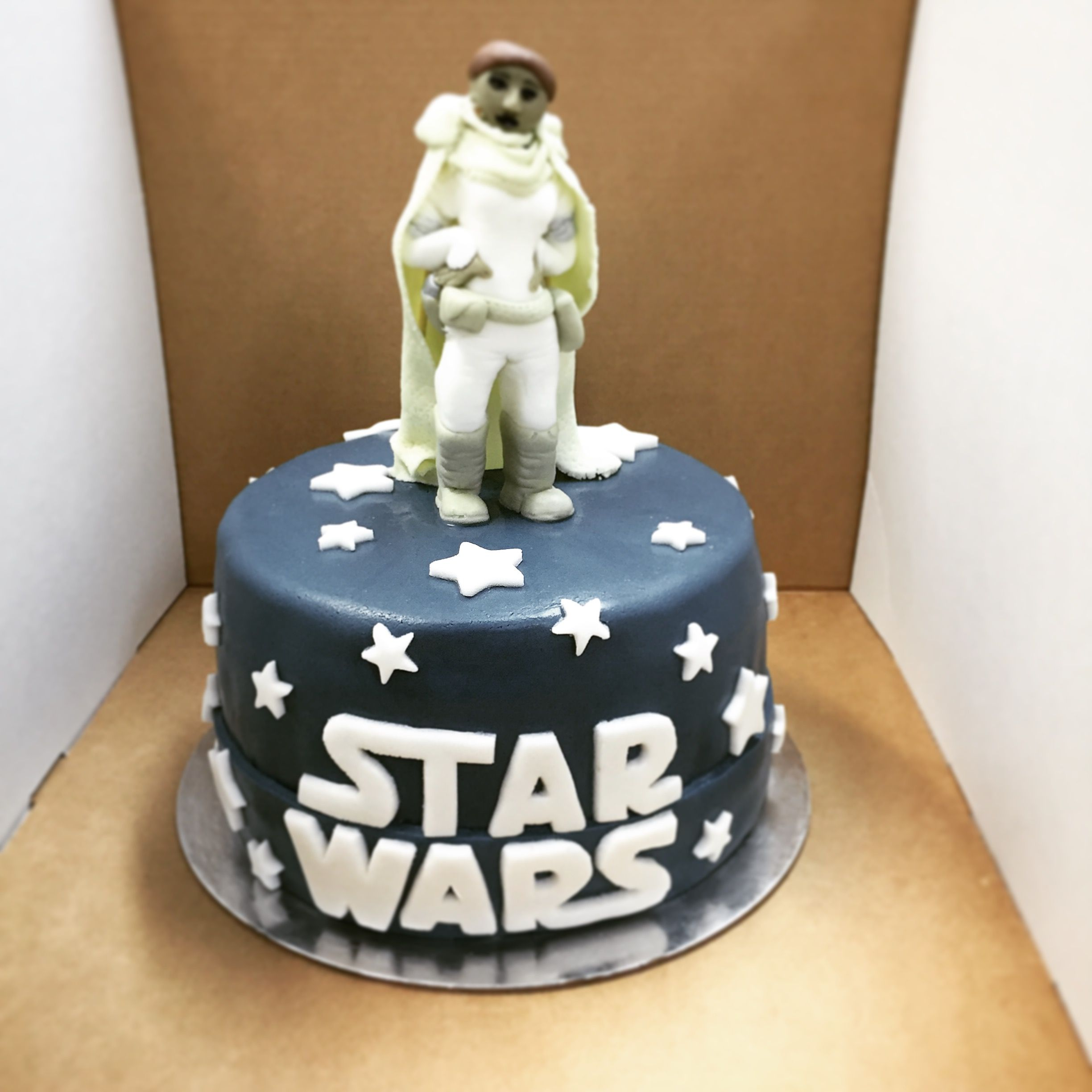 Vegan Star Wars cake Beneath the fondant icing is layers of