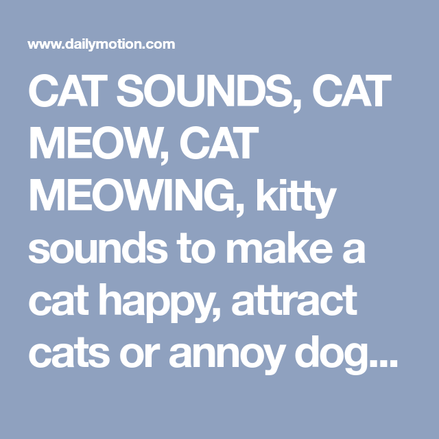 Cat Sounds Cat Meow Cat Meowing Kitty Sounds To Make A Cat Happy Attract Cats Or Annoy Dogs Kitty Sounds For Children Cats Meow Baby Massage Baby Kittens
