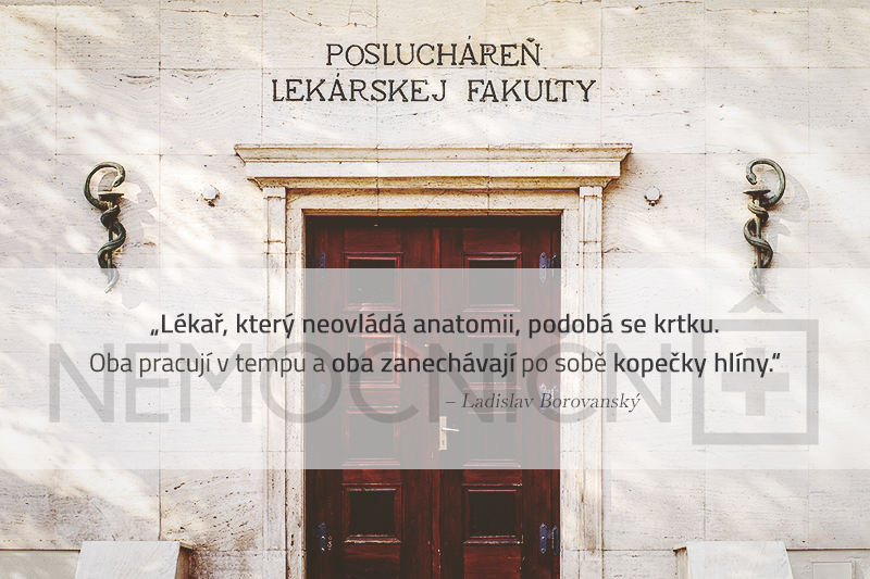 #nemocničnô #nemocnicno #zdravie #zdravi #zivot #medicina #studium #lekarska_fakulta #poslucharen #poslucharna #felciar #lekar #doktor #vyroky #citaty