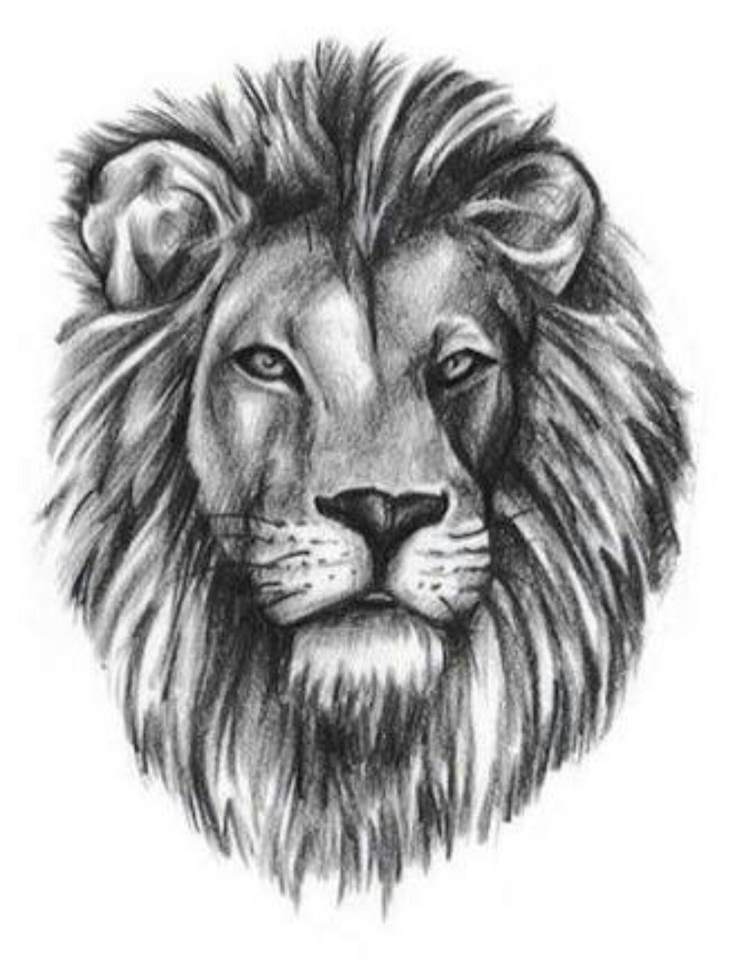 This is awesome!! Lion head tattoos, Lion tattoo design