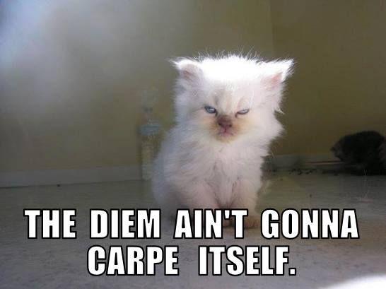 The diem ain t gonna carpe itself