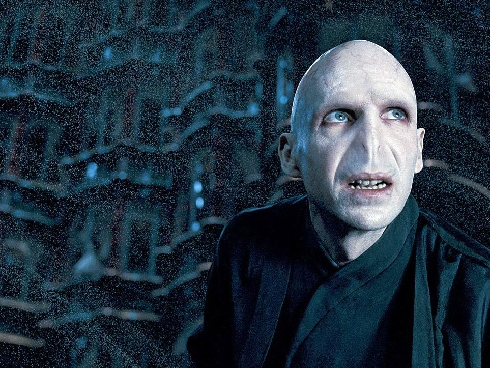 The Harry Potter Books According To Lord Voldemort 1 Lord Voldemort And The Time I Picked T Harry Potter Voldemort Harry Potter Villains Harry Potter Movies