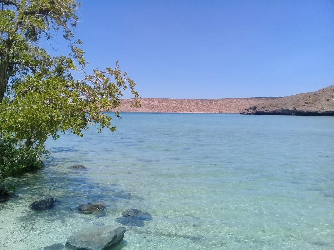 Playa el Tesoro. La Paz BCS | Turismo en mexico, Playa, Turismo