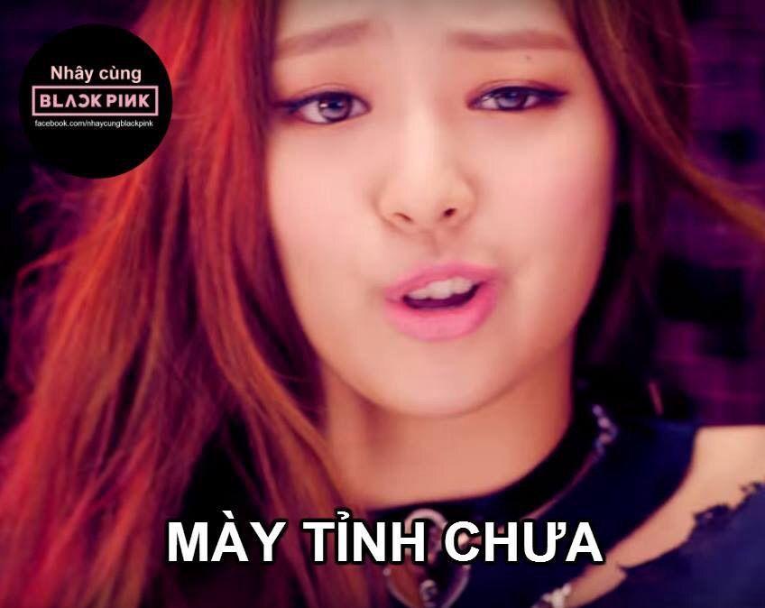 Lam ơn Hay Bảo Vệ Cho Idol Của Cac Bạn Kpop Meme Hai Hước