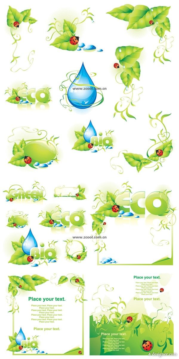 Green leaf ladybug the water droplet lace background vector material