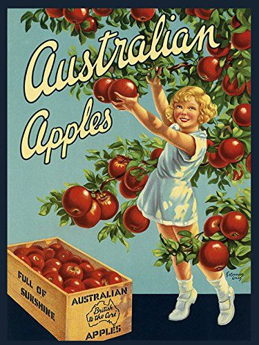 """CANVAS Crate Label Australian Sunshine Australia Apples Fruits Vintage Poster Repro 12"""" X 16"""" Image Size ON CANVAS. We Have Other Sizes Available ! Heritage Posters"""