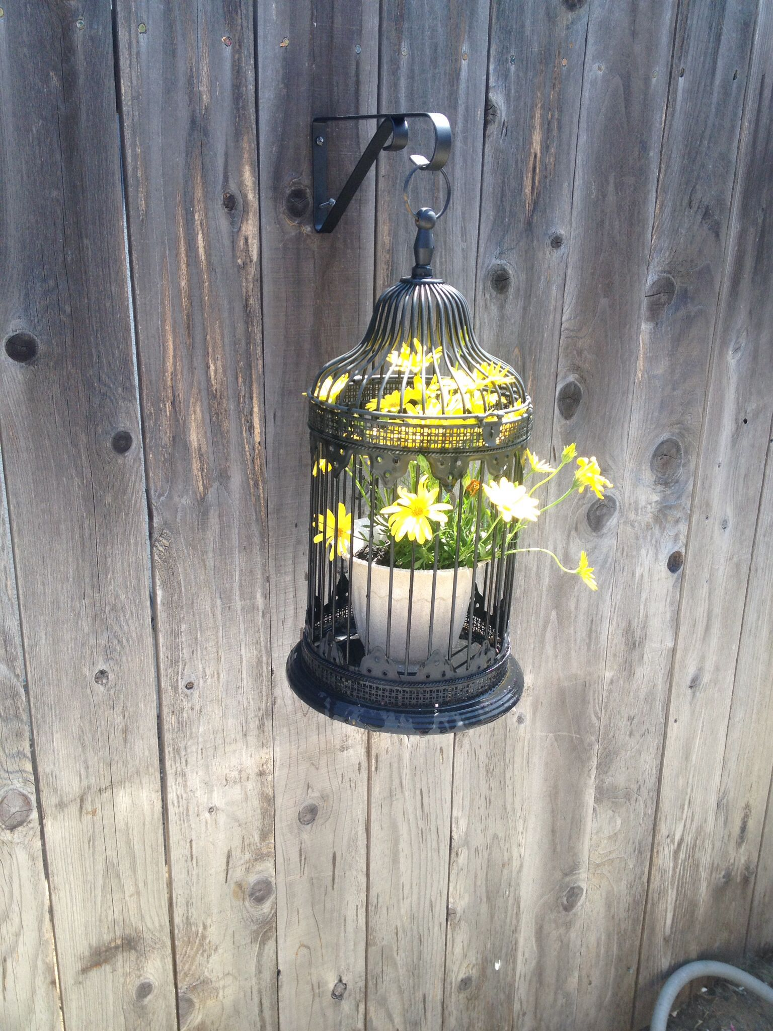 Birdcage hanging planter! Hanging planters, Bird cage, Decor