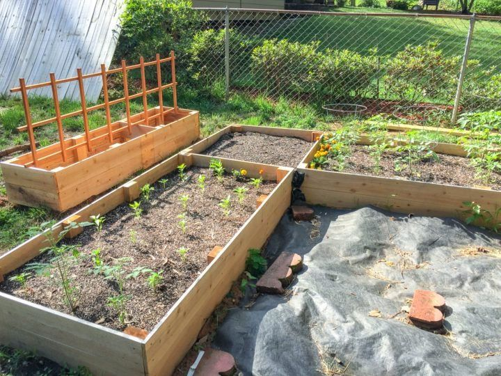 DIY L-Shaped Garden Bed   1000 in 2020   Raised garden ... on L Shaped Backyard Layout id=91870