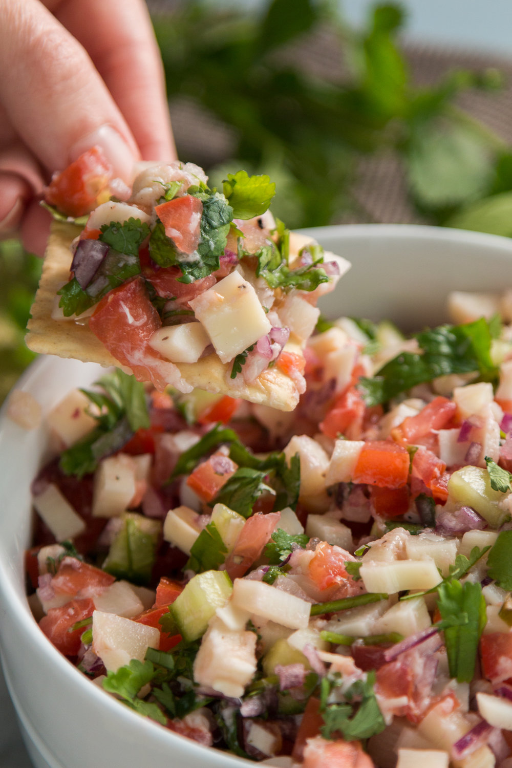 Vegan Ceviche With Hearts Of Palm Vegan Kids Nutrition Blog Vegan Ceviche Recipe Ceviche Recipe Vegetarian Ceviche