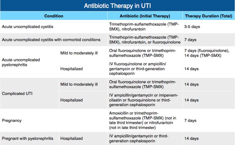 Antibiotic Therapy In Uti Rosh Review