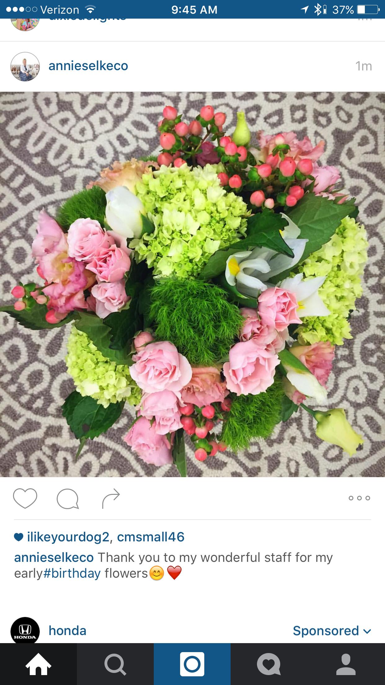 Pin by leslie ingram on flowers pinterest flowers
