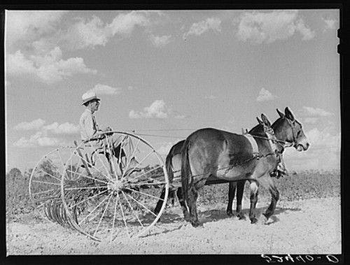 Ever wondered what food and #farming looked like in the past? New project lets you delve into old photos. http://www.foodpolitic.com/new-project-lets-you-delve-into-farms-of-the-past/