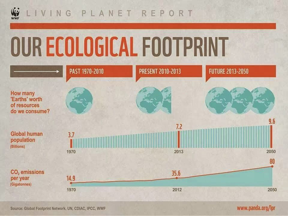 reducing ecological footprint essay In the paper how i reduced my ecological footprint the author considers his connection to the ecosystem and biosphere he felt that he had the urge to reduce the impacts he had on the environment through improving his activities  this measure estimates the land a person uses.