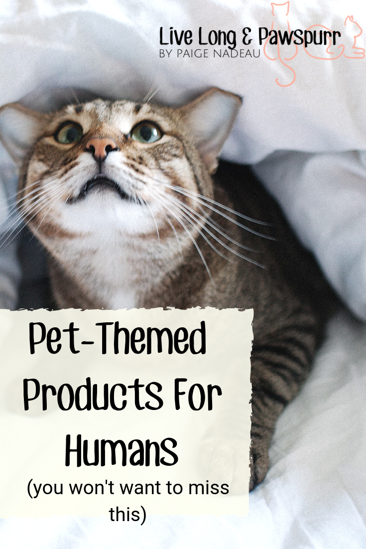 What Pet Related Products Do You Need Pets Pet Advice Dog Life Hacks