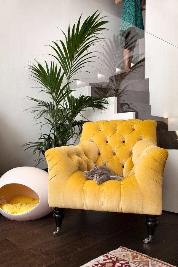 Stylish mews house in Knightsbridge Village   Room, Living spaces ...