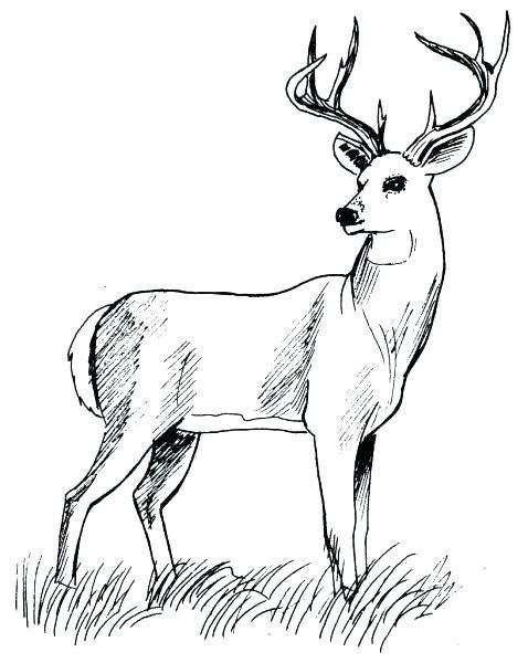 Coloriage chasseur a imprimer coloriage de chasse dessin - Dessin de chasse ...
