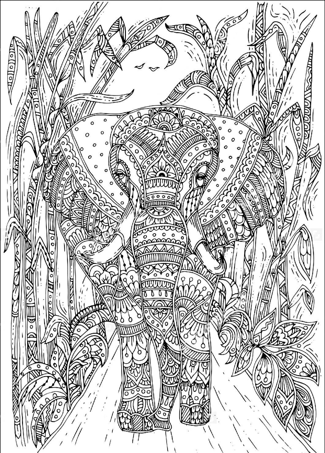 Colouring Sheets Coloring Pages Books Tribal Elephant Realistic Drawings Mandala Design Animal Patterns Stress Relief Art Therapy
