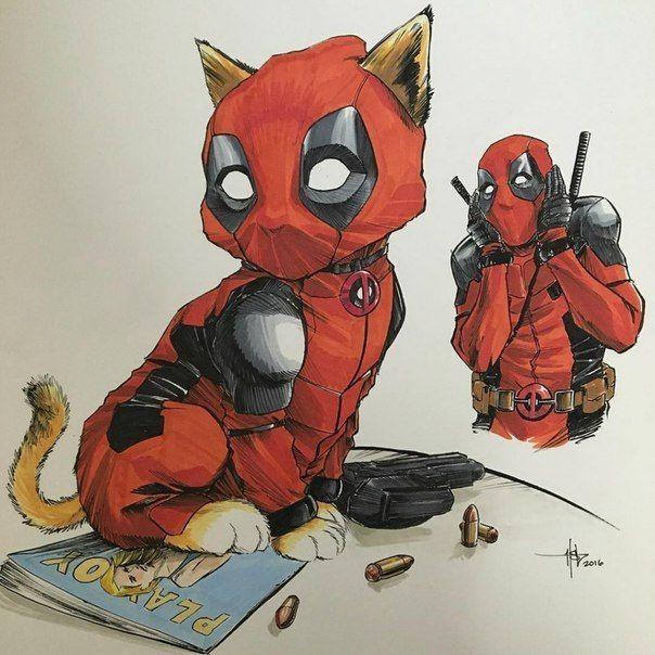 deadpool  cat  deadpool und spiderman deadpool