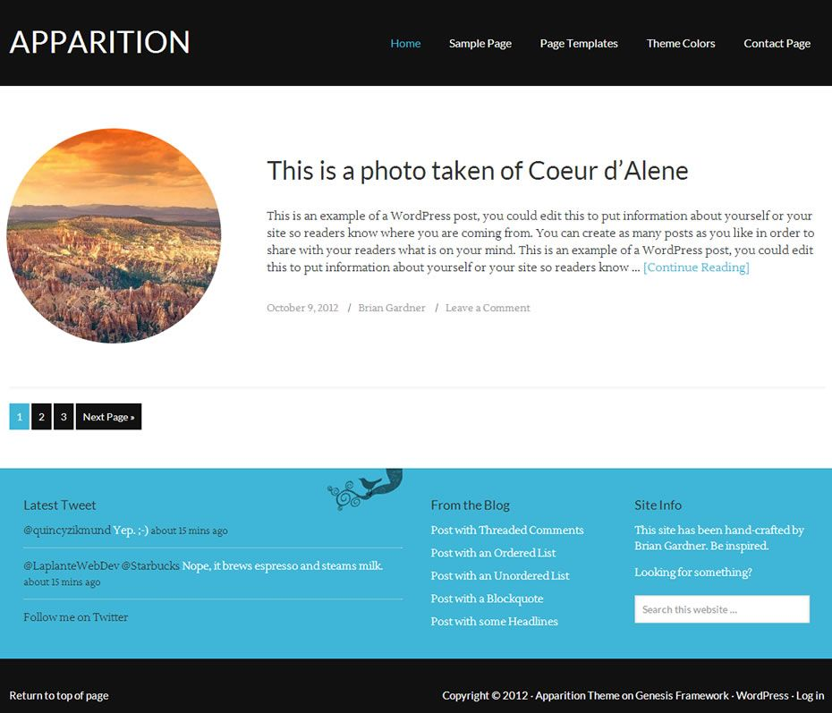 apparition 1.0 genesis child theme for wordpress | Products I Love ...