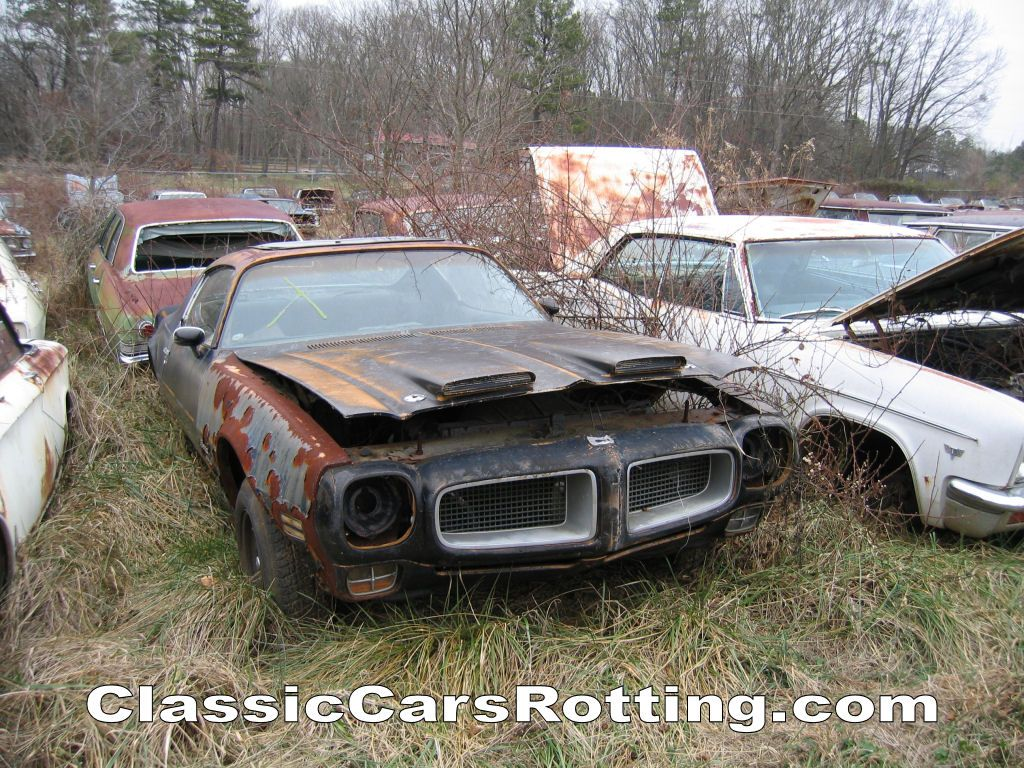 Classic Cars Rotting Junk Car Removal Get An Offer In Minutes Wallpaper Image 1024x768 Old Cars Car Abandoned Cars