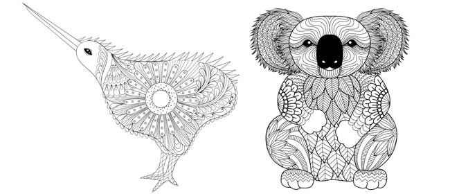 Kiwi And Koala Colouring Pages Colouring Pages Bear Coloring Pages Fox Coloring Page