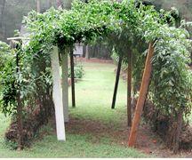 Growing A Straw Bale Garden | DIY Kits | Grow And Make