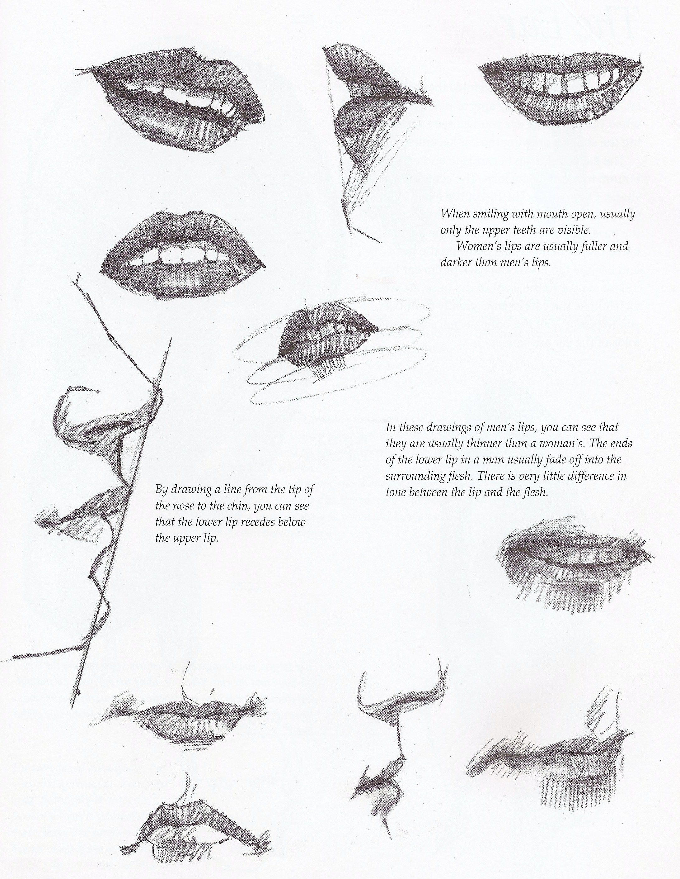 Drawing Tutorial The Lower Lip Recedes Except For Brad