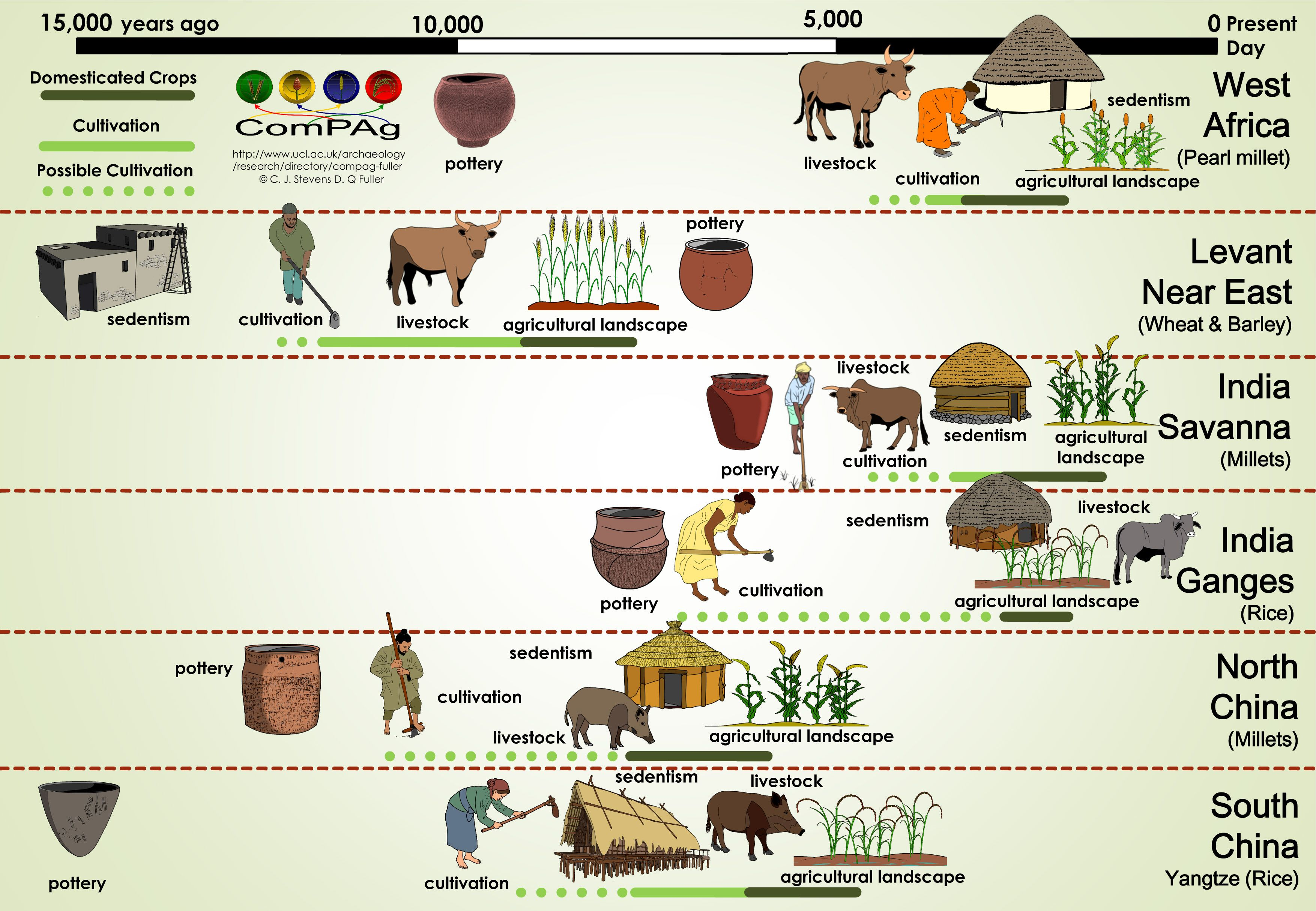 Timeline Of Human History Stone Age Bronze Age Iron Age