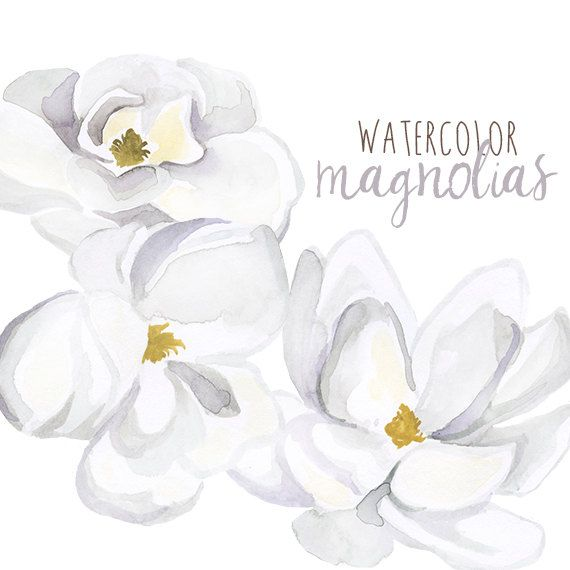 Watercolor Magnolias Floral Clipart Floral Magnolia Clip Etsy Watercolor Flowers Floral Watercolor Watercolor Tattoo Flower
