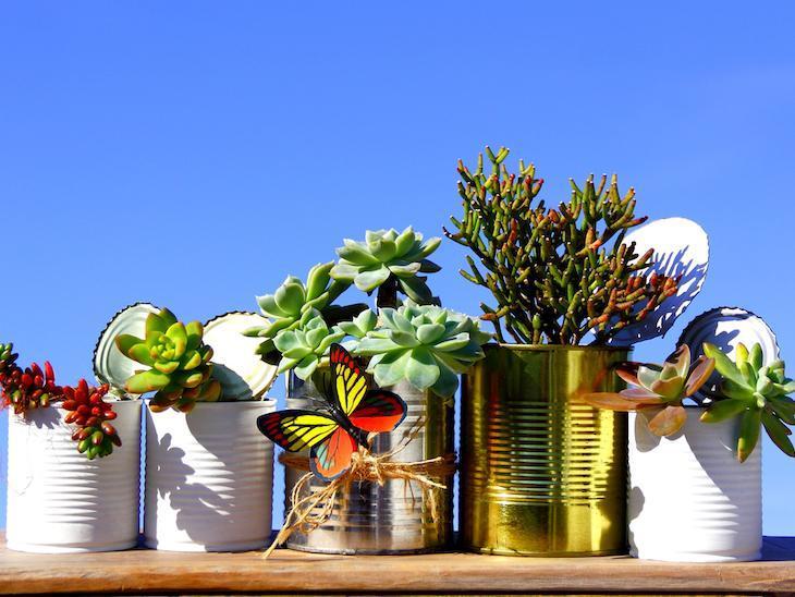 Decoração com suculentas e cactos, vasos para suculentas e cactos, composição de vasos, decoração com plantas, plantinhas, decoração natural, plantas para apartamentos #suculentas #cactos #plantas #Decoração