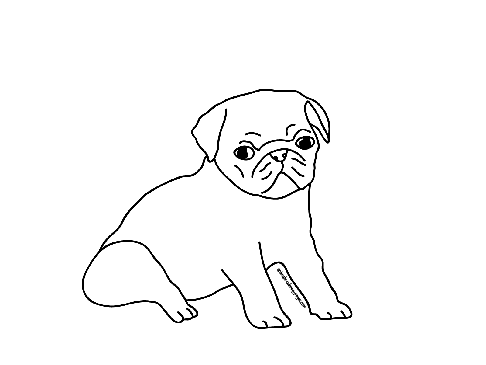 Printable Coloring Pages Puppy Pugs | Sketches, Pugs, Pug love