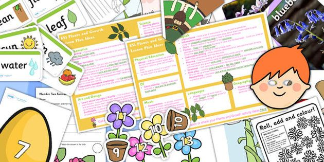 plants and growth ks1 lesson plan ideas and resource pack pack percy the park keeper theme. Black Bedroom Furniture Sets. Home Design Ideas