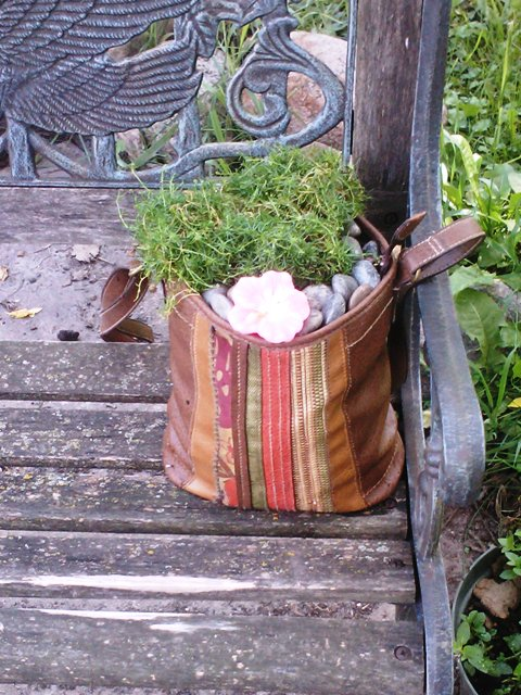 Plant in Purse left on Bench